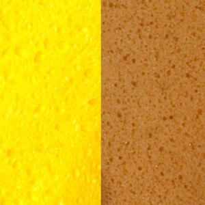 Cellulose and Polyester Synthetic Sponge Material Closeup