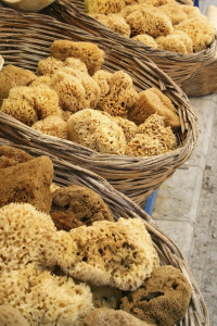Natural Sea Sponges in Baskets