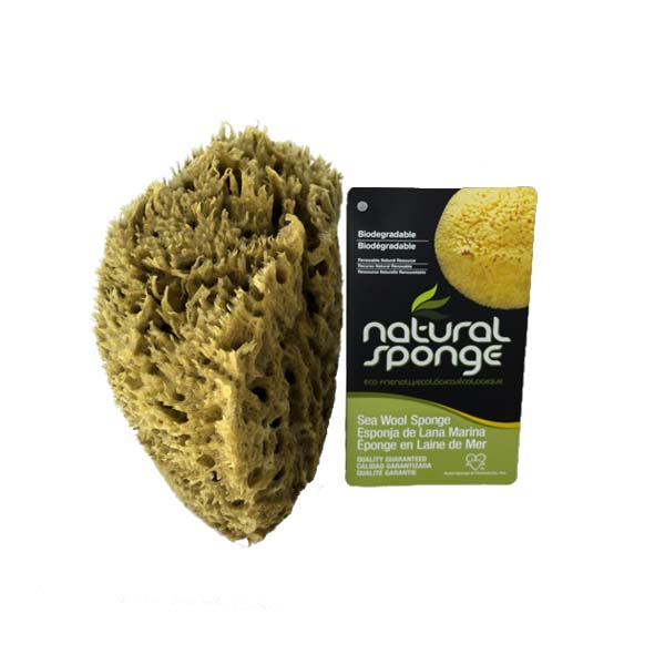 The Natural Brand - Wool Sea Sponge 6-7 Inch SW #1-6070C | Side with Label