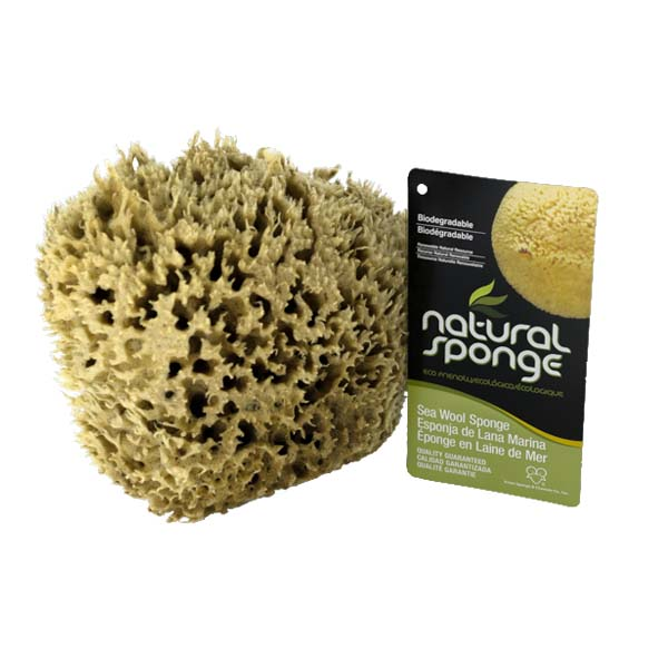 The Natural Brand - Wool Sea Sponge 6-7 Inch SW #1-6070C | Front with Label
