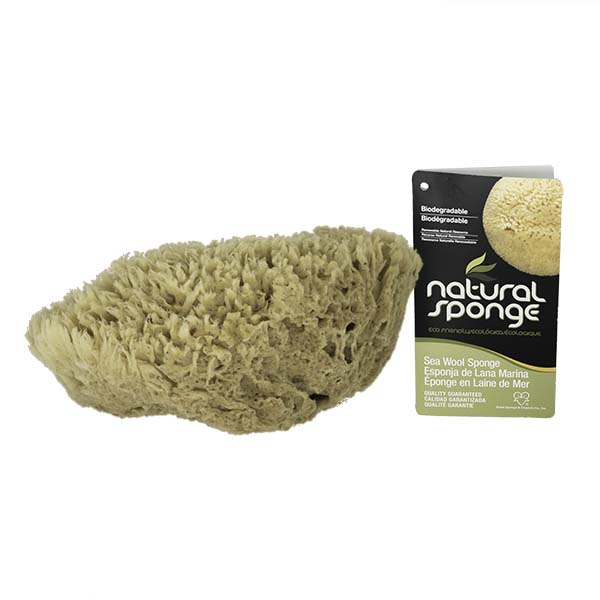 The Natural Brand - Wool Sea Sponge 9-10 Inch SW #1-9010C | Side with Label