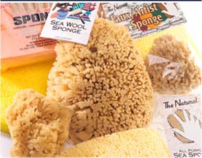 Acme Sea Sponge Products