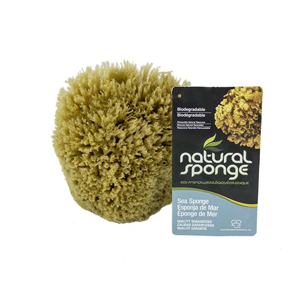 The Natural Brand - Yellow Sea Sponge 5-6 Inch Y-5060 | Front with Label