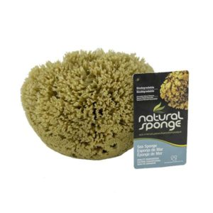 The Natural Brand - Yellow Sea Sponge 6-7 Inch Y-6070 | Front with Label