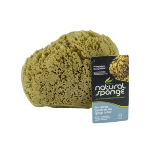 The Natural Brand - Yellow Sea Sponge 7-8 Inch Y-7080 | Front with Label