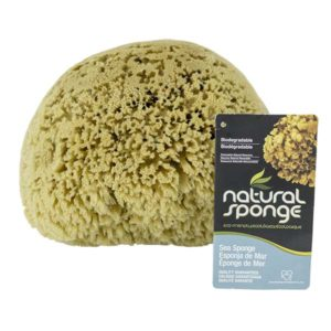 The Natural Brand - Yellow Sea Sponge 9-10 Inch Y-9010 | Front with Label 2