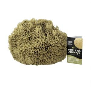 The Natural Brand - Wool Sea Sponge 11-12 Inch SW #1-1112C | Front w/ Label