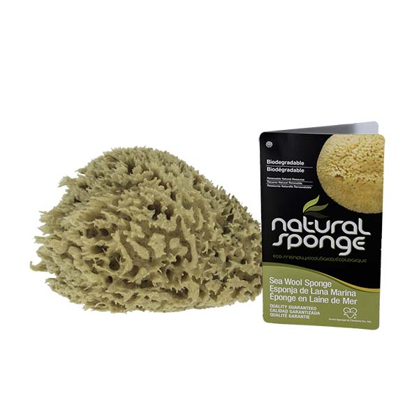 The Natural Brand - Wool Sea Sponge 5-6 Inch SW #1-5060C | Side 2 with Label