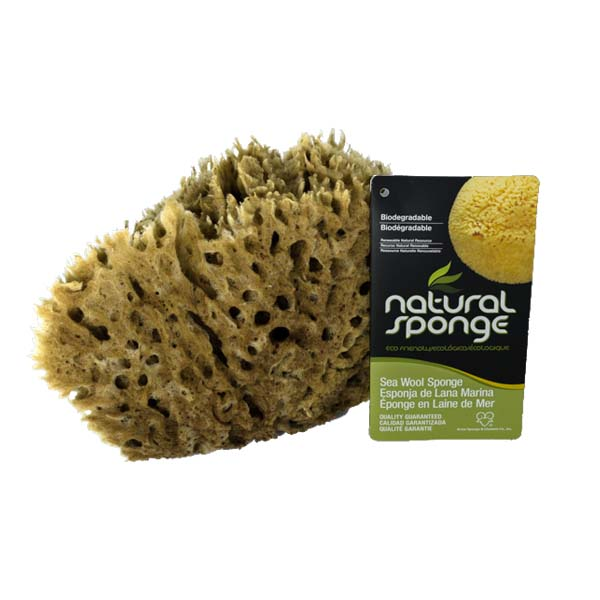 The Natural Brand - Wool Sea Sponge 6-7 Inch SW #1-6070C | Back with Label