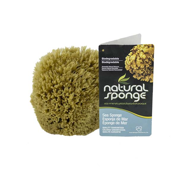 The Natural Brand - Yellow Sea Sponge 4-5 Inch Y-4050 | Front with Label