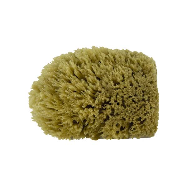 The Natural Brand - Yellow Sea Sponge 4-5 Inch Y-4050 | Side 1