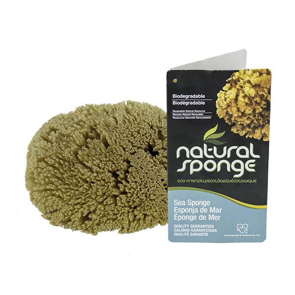 The Natural BraThe Natural Brand - Yellow Sea Sponge 4-5 Inch Y-4050   Top with Labelnd - Yellow Sponge 4-5 Inch Y-4050   Top with Label