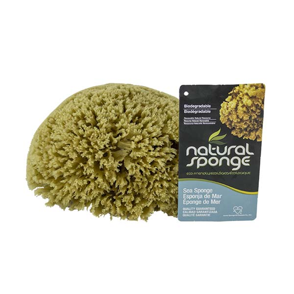 The Natural Brand - Yellow Sea Sponge 6-7 Inch Y-6070 | Top with Label